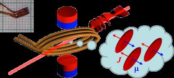 Ultrafast Gas Magnetization